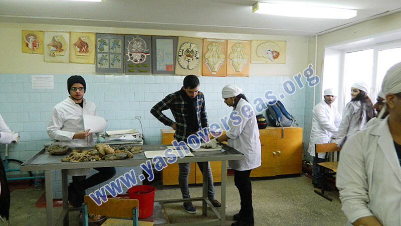 Chuvash State University Medical Academy practicle classes